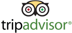 Logo Papilla