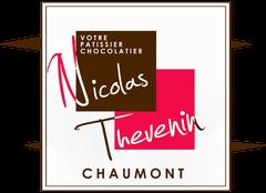 Logo Thevenin Nicolas