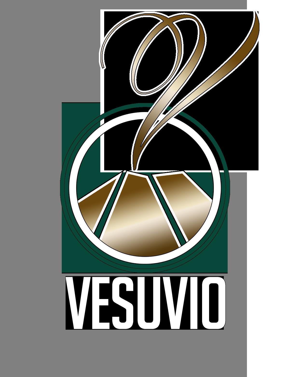 Logo Restaurant le Vesuvio