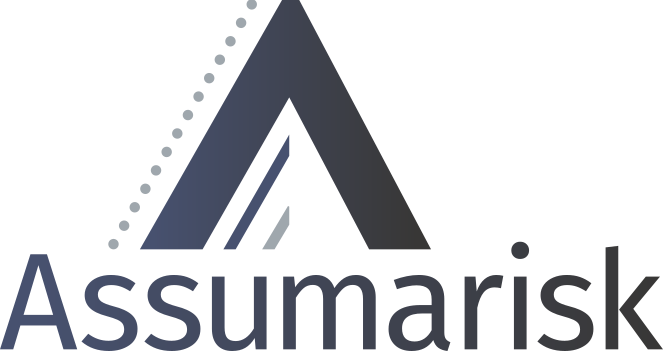 Logo Assuriskgroup