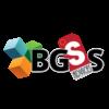 Logo Bgss Advices