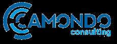 Logo Camondo Consulting