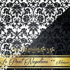 Logo Le Pont Napoleon