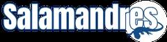 Logo Salamandres Developpement