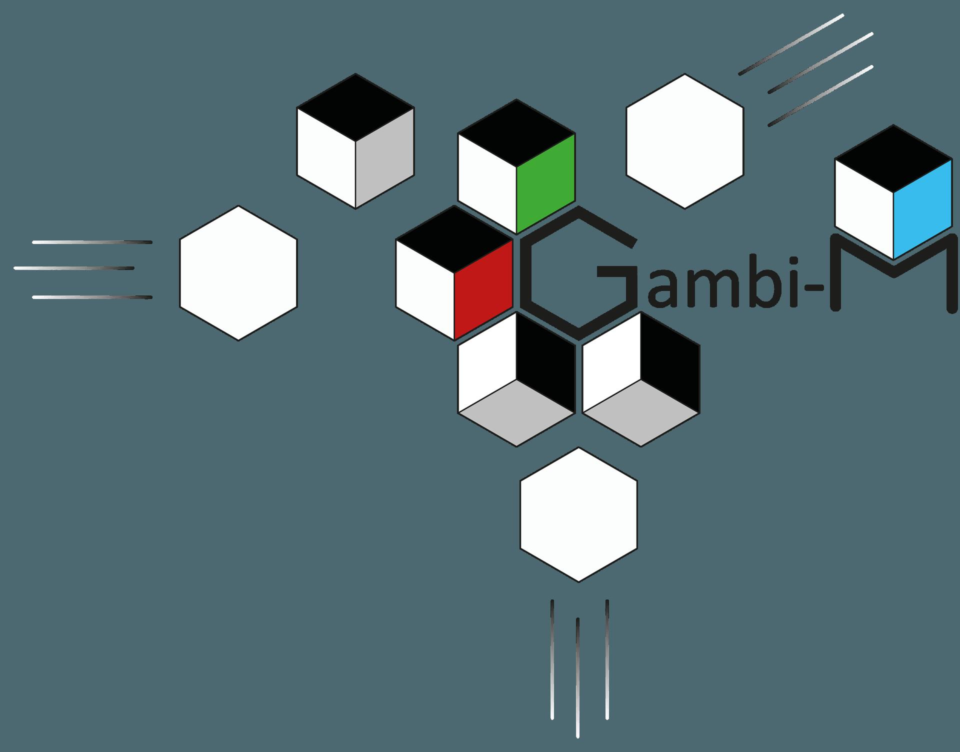 Logo Gambi-M