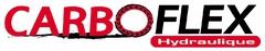 Logo Carbo-Flex
