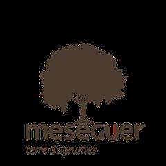 Logo Meseguer