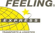 Logo Feeling Express