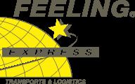 Logo Feeling Express