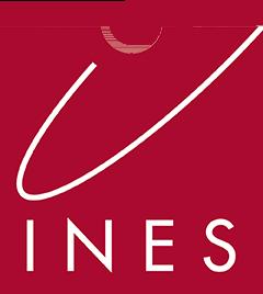 Logo Ines Expertise