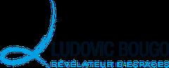 Logo Ludovic Bougo Decoration