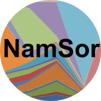 Logo Namsor