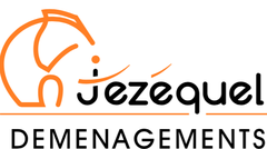 Logo Box 29