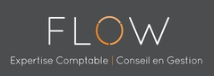 Logo Flow Expertise