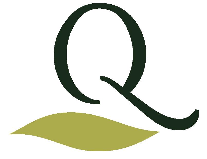 Logo Queues de Cerises