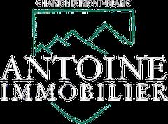 Logo Antoine Immobilier
