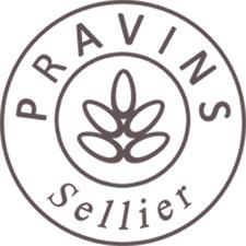Logo Atelier de Pravins