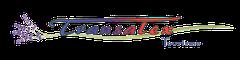Logo Autocars Transalex