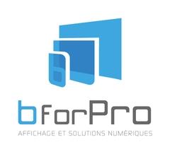 Logo B For Pro