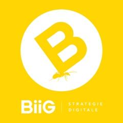 Logo BIIG