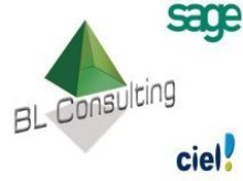 Logo Bl Consulting