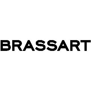Logo Esmi