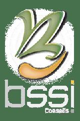Logo BSSI Conseils