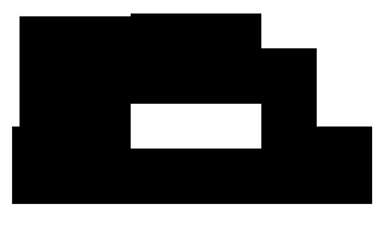 Logo Cadre Roussin