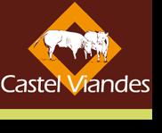 Logo Castel Viandes