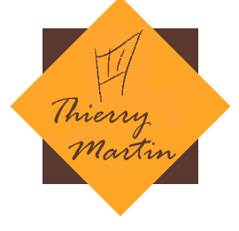 Logo Thierry Martin