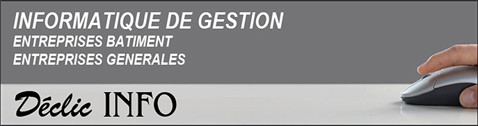Logo Declic Info