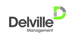 Logo Delville Group