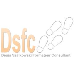Logo Dsfc