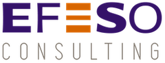 Logo Efeso Consulting France