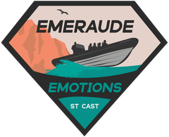Logo Emeraude Emotions