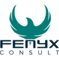 Logo Fenyx Consult