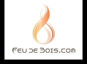 Logo Feudebois Com