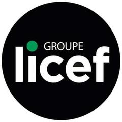 Logo Licef