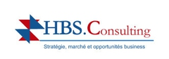 Logo Hbs Consultings
