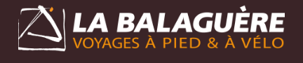 Logo La Balaguere