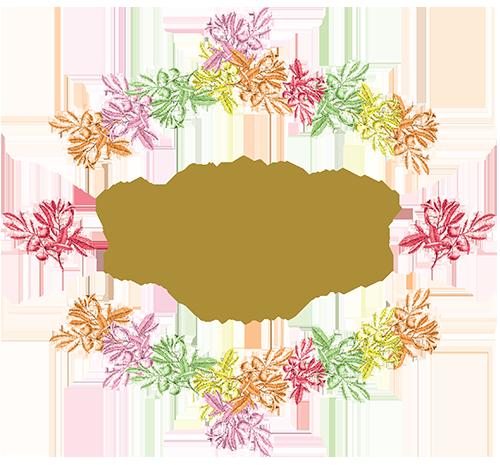 Logo Laouz
