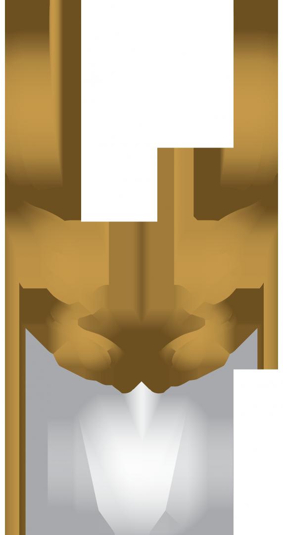 Logo Tannerie du Perche