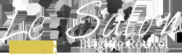 Logo Brigitte Rouxel Coiffure