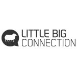 Logo Little Big Connection
