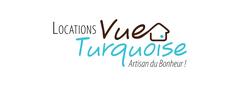 Logo Vue Turquoise