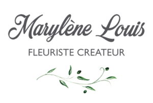 Logo Maison Montagnac