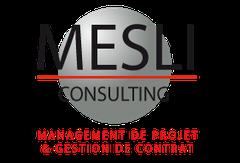Logo Mesli Consulting