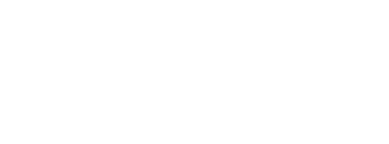 Logo Mister Bois