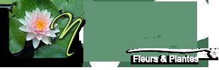 Logo Huguette Fleurs
