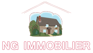 Logo Ng Immobilier